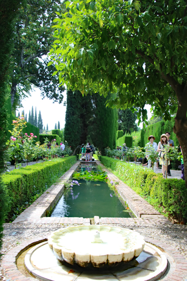 2 ヘネラリーフェ庭園.jpg