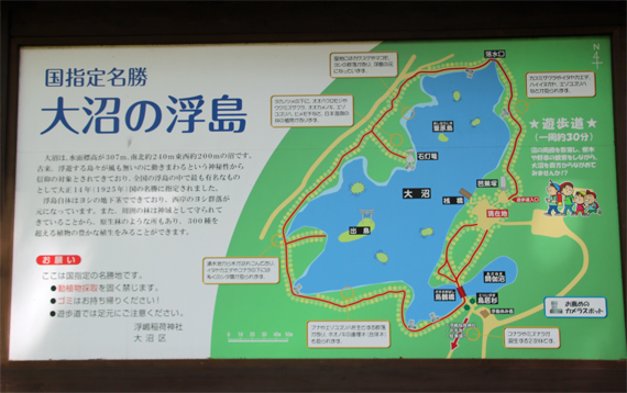 8 浮島.jpg