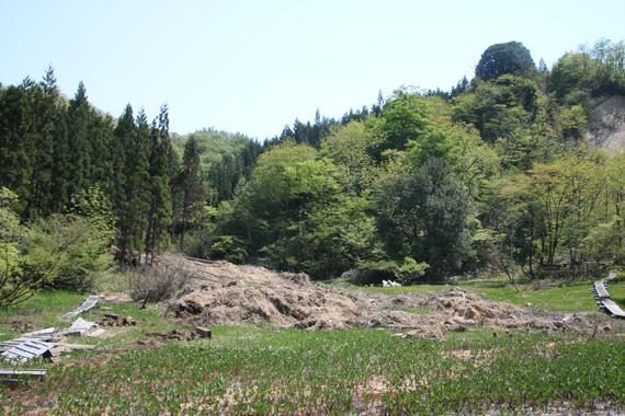 9 湿原.jpg