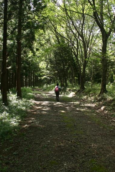 散策コース2.JPG