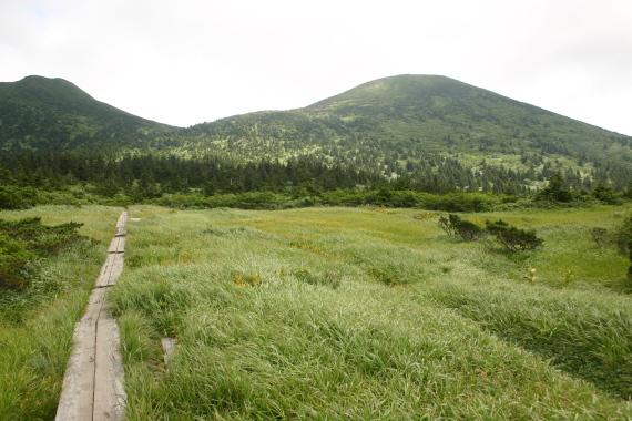 毛無岱湿原と大岳16.JPG